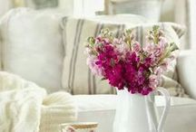 DECOR - French Country/Shabby Chic / LOVE <3 Home make-over / by Michelle Eliason