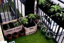 GARDEN // IDEAS // HACKS / Inspiration for how to keep a garden.