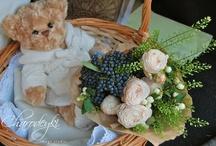Our floristics