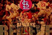 St. Louis Cardinals / by John Lane