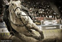 Rodeo and all things Horses