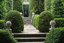 Gardens / by Peony Lim