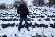 Λεβάντα παντός καιρού / Δείτε χιονισμένα χωράφια λεβάντας