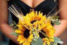 Hawkeye Wedding Inspiration