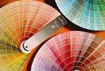Color Consultant / by Barbara Levitz