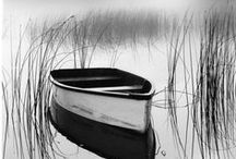 Black & White Photography / Beautiful black and white #photography - works of #art from around the web.