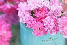 Wedding Theme Pink and Turquoise