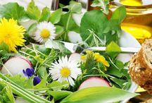 Wildkräuter & Heilpflanzen / Auf dieser Pinnwand sammle ich alles über Wildkräuter, Heilpflanzen und Gewürze aus dem Garten.