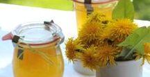 Rezepte Frühling / Hier sammle ichsaisonale Frühlings- und Sommerrezepte aus regionalen Zutaten.