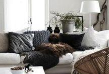 Home Decor / by Carina Ramirez