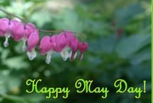 May Day / I grew up celebrating May Day•••Brings Back Fond Memories! / by Vickie 🍃🌺🌿