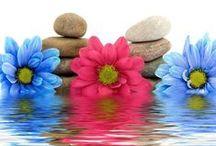 Yoga ~ ZEN ~  / Het beste wat je kunt doen voor je hersenen.
