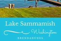 All about Lake Sammamish / Living at 17120 SE 35th Street, Bellevue Washington MLS 770588