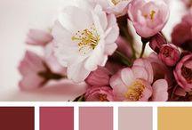 Kleurenpalet Flowers / Bloemen o.a. Hortensia, de roos en de orchidee.