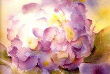 Flowers...Hortensia's / Ben er helemaal weg van...al die kleuren...niet alleen in de tuin ook als schilderij ben ik er weg van..zelfs gedroogd zijn ze prachtig...