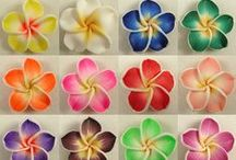 fiori / Per tutti i gusti, di tutti i tipi