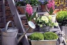 Do ogrodu (Garden ideas)