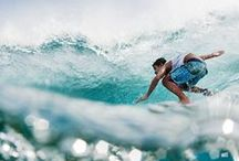 surf ocean life