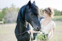 Equestrian Wedding Theme / If you love horses as much as we do, you'll love these equestrian wedding theme ideas!