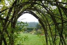 vrby, vrbové stavby