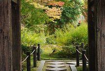 庭園(庭苑) / garden
