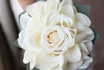 Flowers {AmberSimmons.com}