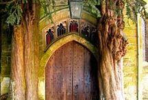 Wooden Wonders / Trees, Doors ... wooden wonders