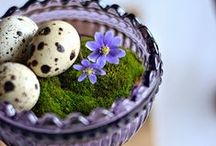 ☆ Easter Blessings / Let's celebrate the warming winds, longer days, spring gardens, and His rebirth.