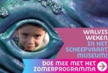 Walvis Weken - Zomervakantie