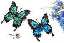 Motyle/ butterfly
