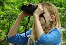 """Wild ✧Birding / Support local wetlands, grab some binoculars and an identification book, and let's get out there! Birdhouses, feeders, and attracting birds to our gardens is on my board """"✿~Gardens with birds""""."""