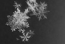 Season of Winter / ❖ Winter Beauty