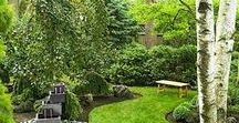 A Zen Garden / ~~~ relax ~~~ reconnect ~~~ rejuvenate ~~~