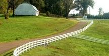 A Horse Ranch / Welcome to the horse ranch ♡ of my DREAMS! I love dreaming about having my own small herd of horses with a lovely barn, plenty of quality hay, solid horse fencing, beautiful places to ride, and plenty of pasture to rotate through. Please enjoy!