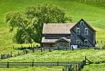 """A Pewter Farmhouse / """"Her laughter was a shiny thing, like pewter flung high in the air."""" ~Pat Conroy"""