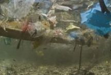 Why Compostables?