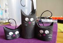 kočky / vše o kočkách