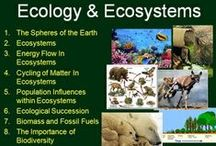 **High School Ecology / Science education