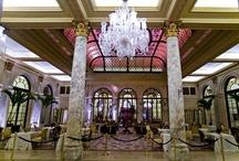 Ranthambore Hotels