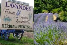 Les jardins et les fleurs d'ici et d'ailleurs / Jardins et fleurs ... D'ici et d'ailleurs