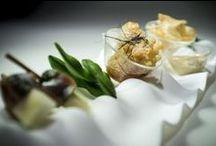 Barcelona Food & Restaurants / Bonavista shares with you its favorite Barcelona restaurants and food.