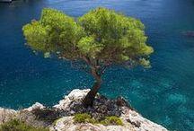 La Provence / Ma Provence mon pays merveilleux !!!