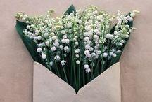 MOLLIE ♥ Frühlingsblumen / Ihr sucht nach frischen Ideen den Frühling ins Haus zu holen? Wir zeigen euch Blumen aller Art - in #selbstgenäht, #selbstgesteckt, #selbstgebastelt, #selbstgeklöppelt und immer mit Anleitungen und kostenlos!