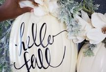 MOLLIE ♥ Kürbisse / Ob geschnitzt, gestrickt, gehäkelt, aus Papier oder lecker auf dem Teller angerichtet - wir lieben Kürbisse!