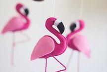 MOLLIE ♥ Flamingos