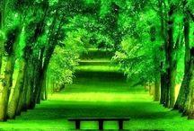 < Green >