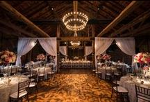 Dream Themes/Venues / Check out these gorgeous venues for all weddings styles!