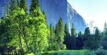 Beautiful photos / The beautiful nature keeps fascinating me