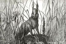 Gustave Dore....