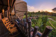 Hotéis Walt Disney World